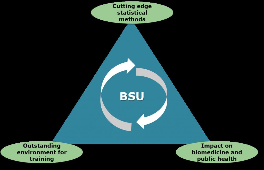 Diagrammatic representation of the current MRC Biostatistics Unit vision